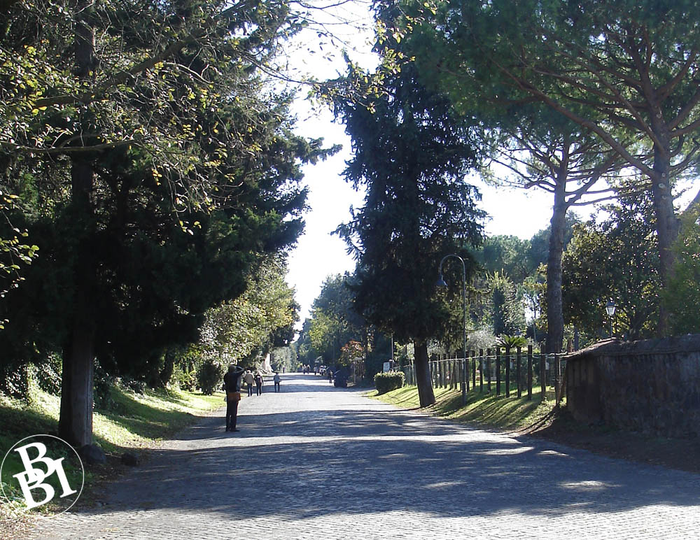 Shady Roman road with tall trees on either side