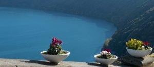Flowerpots above a lake