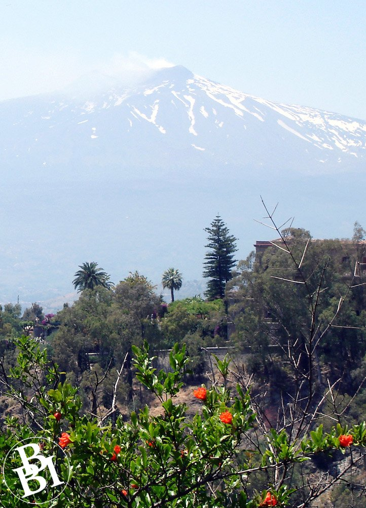 Bushes and flowers with Mount Etna in the distance