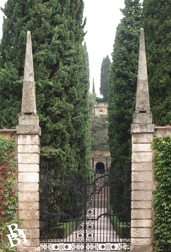 Gate leading to tree lined path