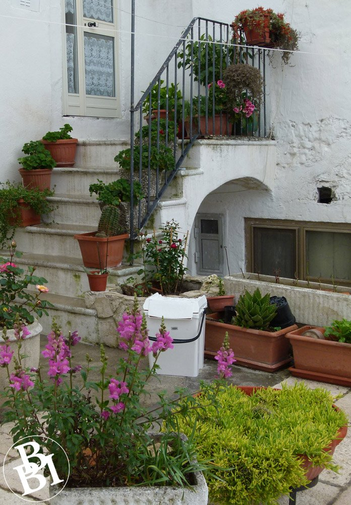 White painted house and stairway with plants