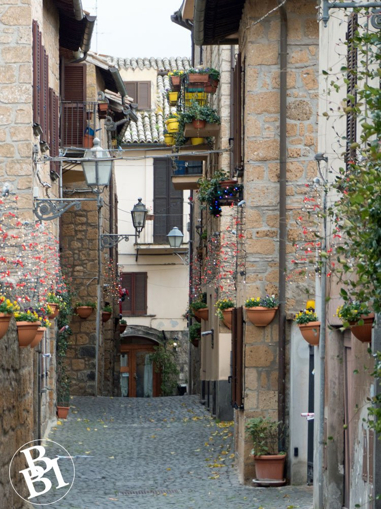 Narrow cobbled street and houses with flower pots outside
