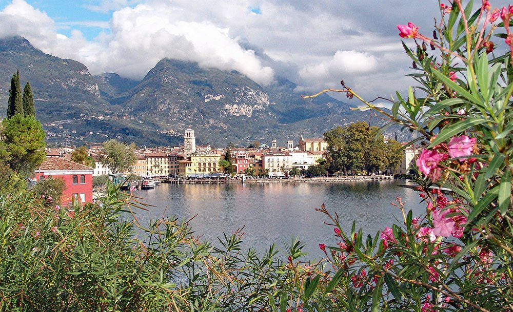 Lake, town and mountains with flowers around the edge