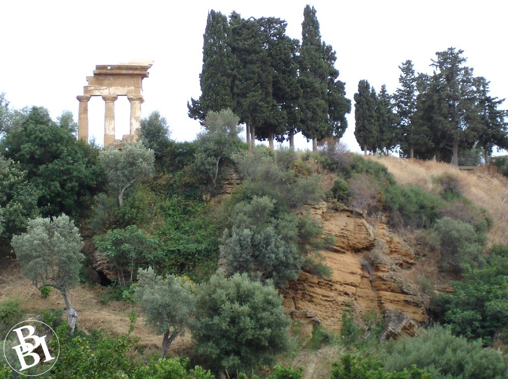 Hillside with trees and ruined temple at the top