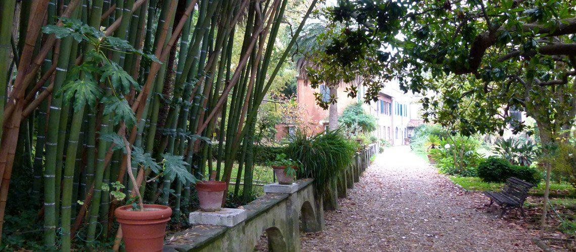 Pisa Botanical Garden